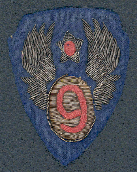 One of my dad's 9th Army Air Force shoulder patches